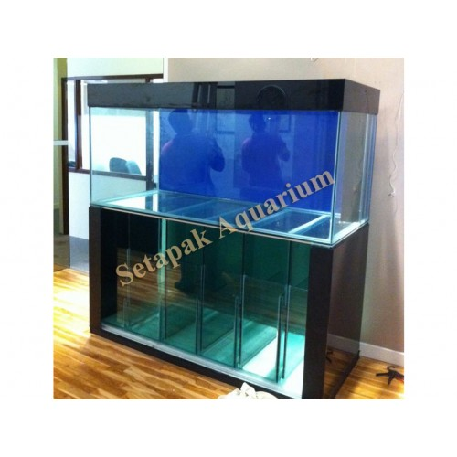 Full Glass Aquarium Cabinet 01 Custom Made Aquarium